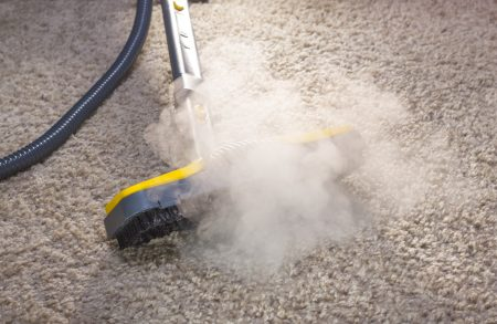 How to Clean Your Carpet With a Steam Mop (7 Easy Steps!)