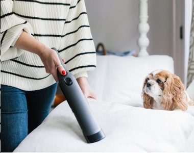 Best Handheld Vacuums for Pet Hair of 2020