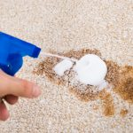 Cleaning carpet stain with the best carpet stain remover