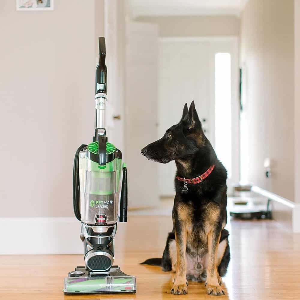 Best Bissell Vacuums of 2020