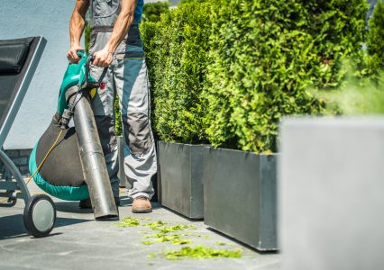 Best Leaf Vacuums (2020 Buying Guide)