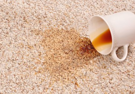 How to Clean Coffee out of Carpet (3 Fail-Proof Solutions)