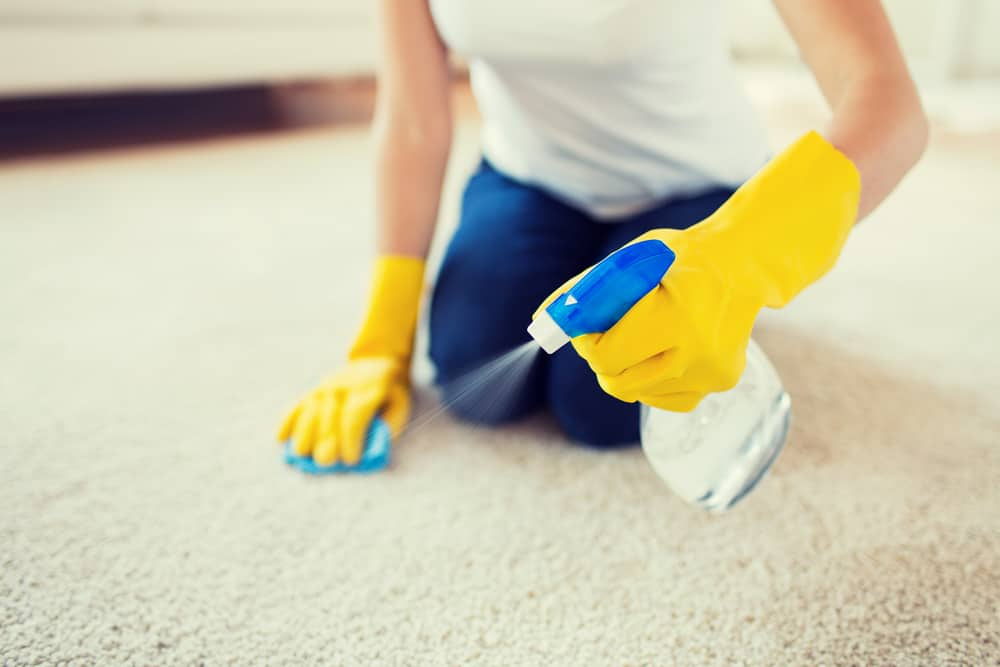 Woman cleaning smelly carpet