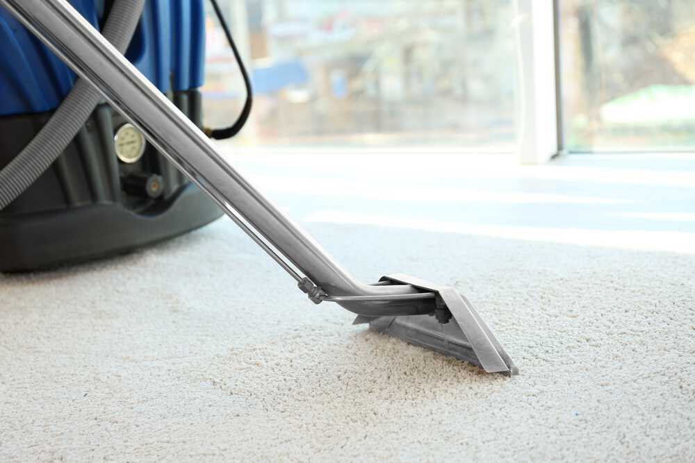 Steam cleaner removing dirt from carpet
