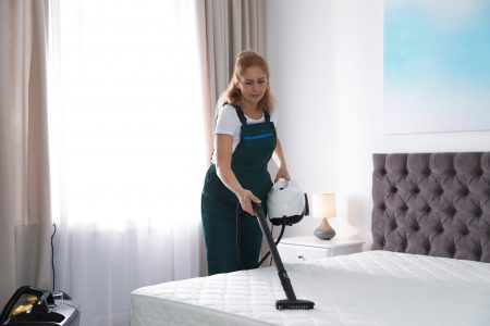 5 Best Steam Cleaners for Bed Bugs (2020 Review)