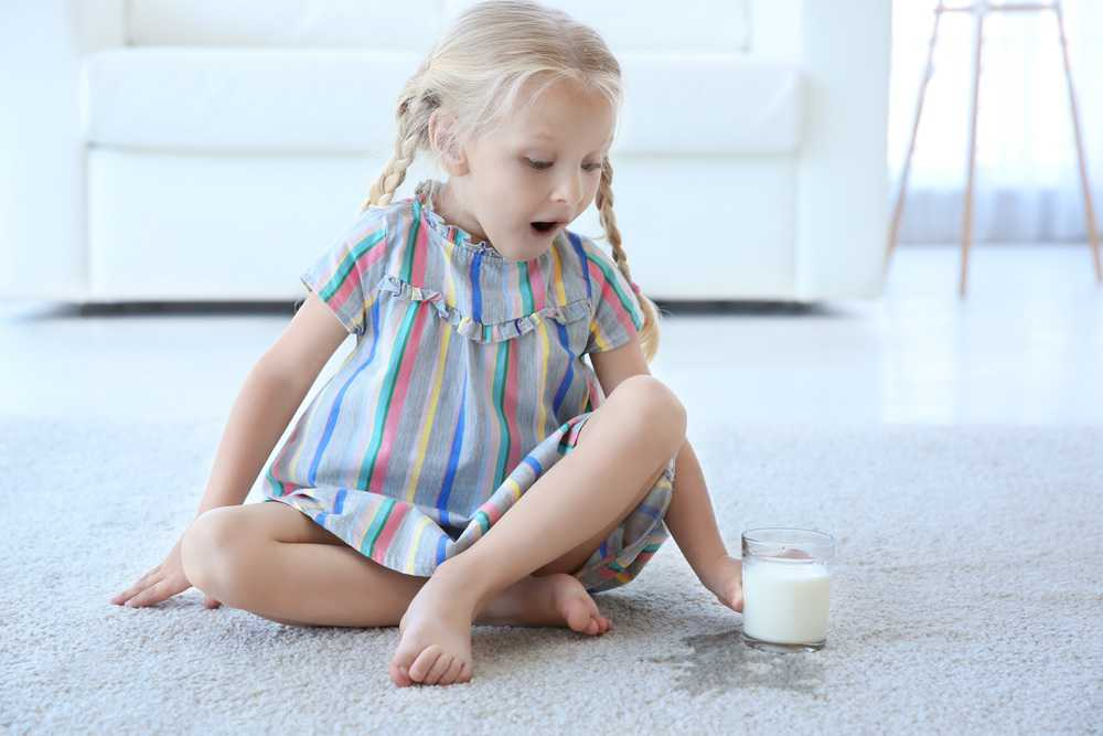 How To Clean Milk From Carpets (6 Foolproof Steps)