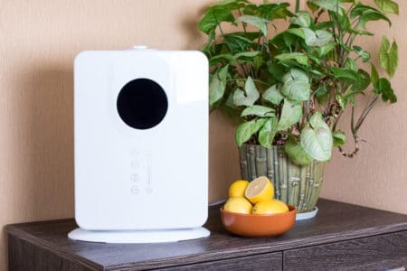 The Best Air Purifier and Humidifier Combos (Find the Right Mode for You)