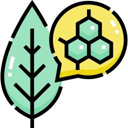Use Plant-Based Enzymes Icon